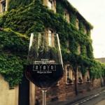 Weinglas mit Rotwein vom Weingut Bernhard Grünewald